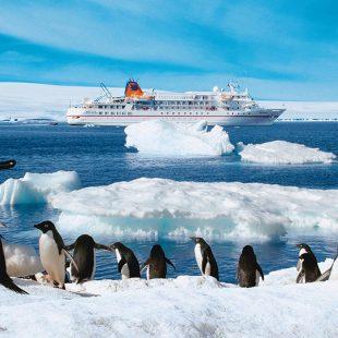 MS Bremen - Antarktis