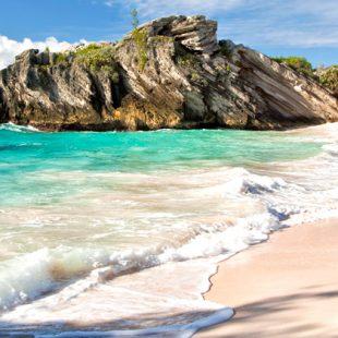 Bermuda-munka-crew-agency